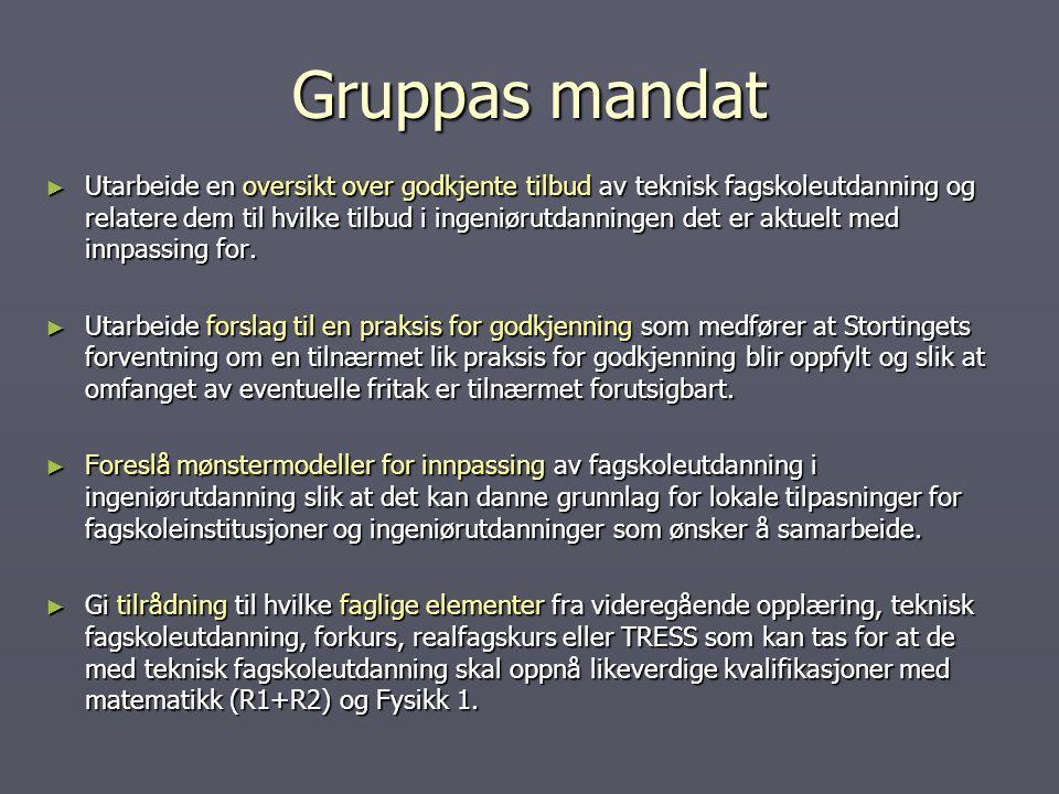 Gruppas mandat