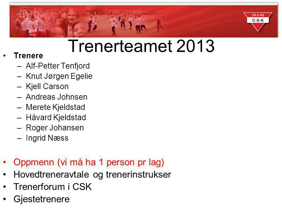 Trenerteamet 2013 Oppmenn (vi må ha 1 person pr lag)
