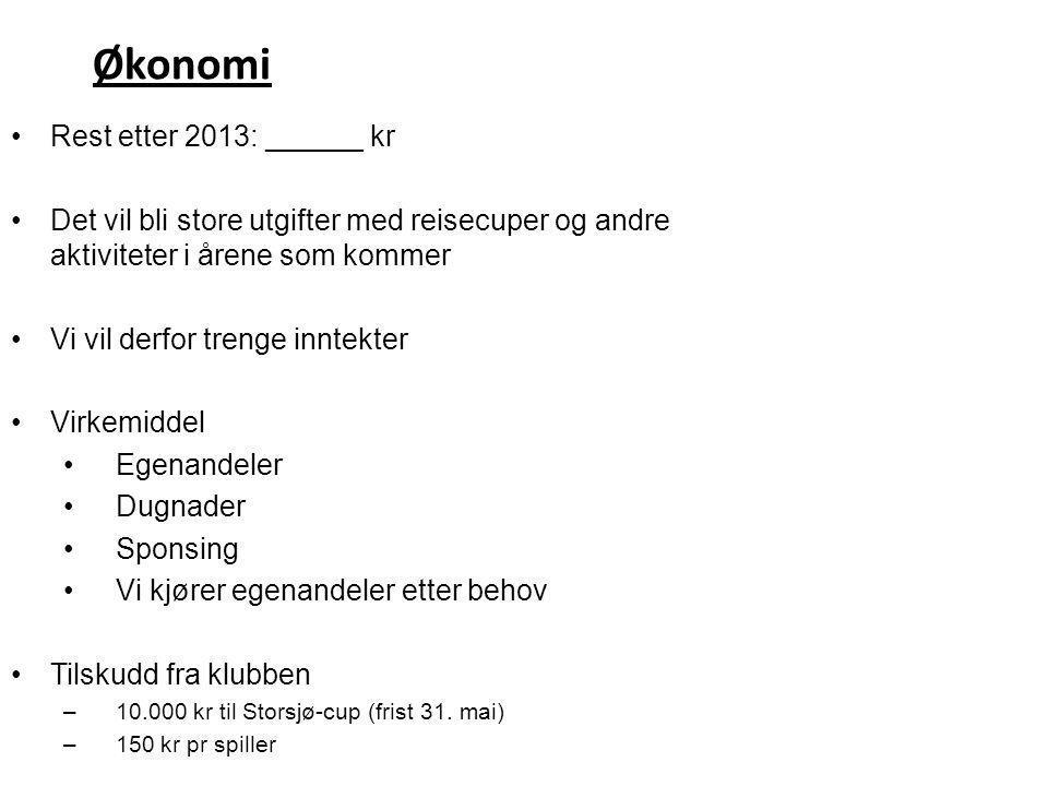 Økonomi Rest etter 2013: ______ kr