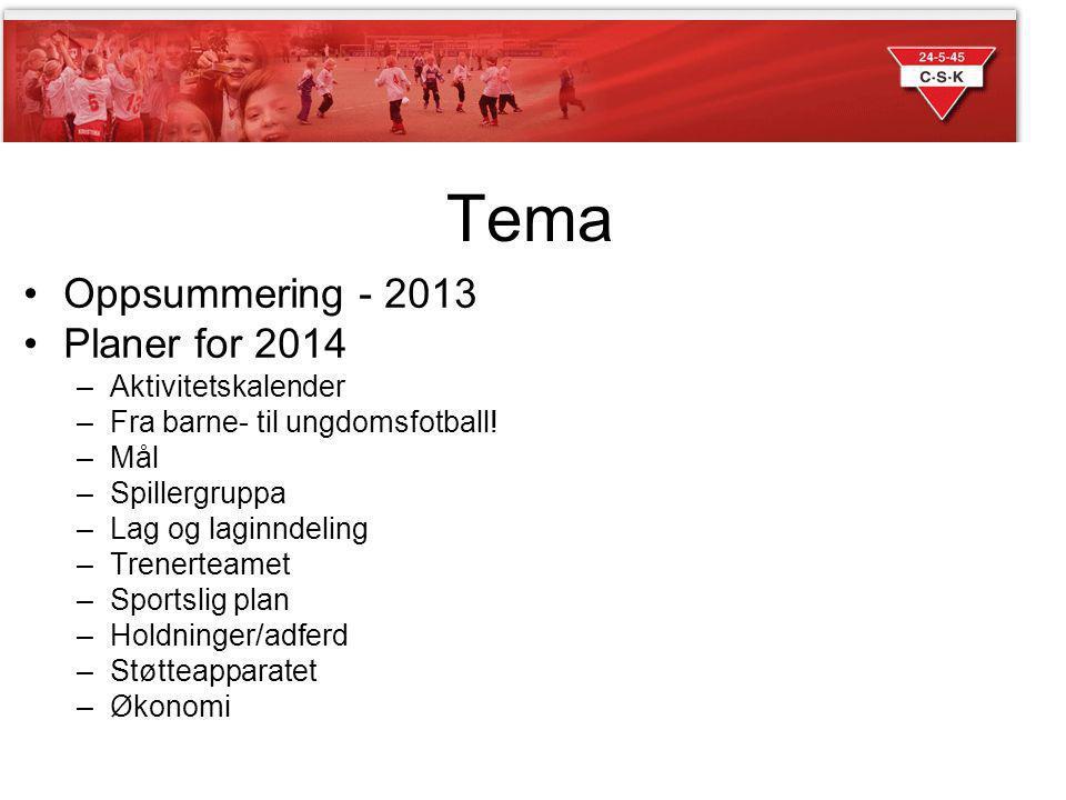 Tema Oppsummering - 2013 Planer for 2014 Aktivitetskalender