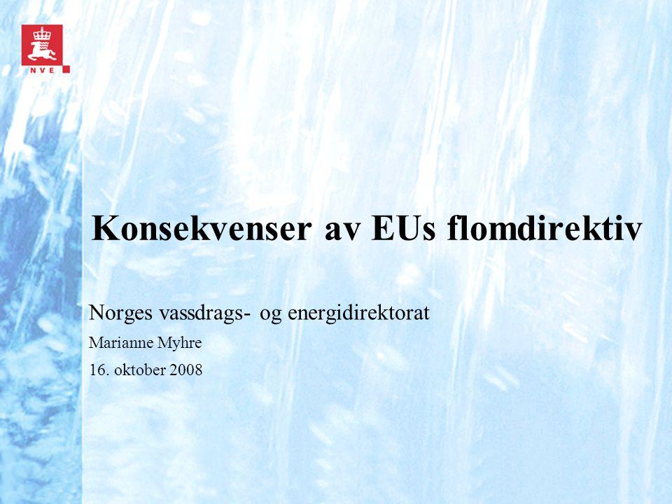 Konsekvenser av EUs flomdirektiv