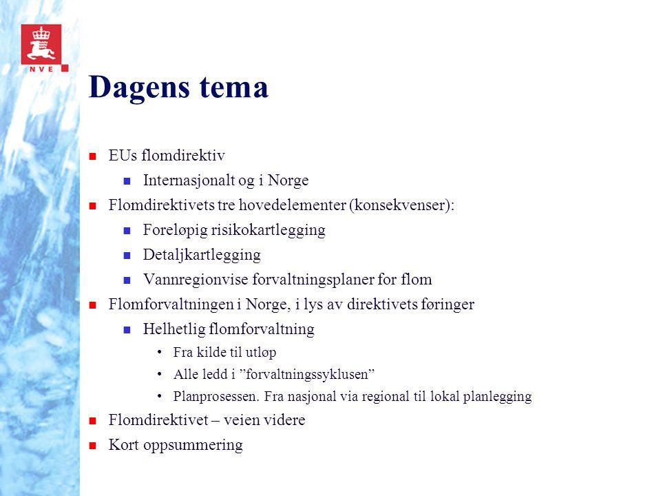 Dagens tema EUs flomdirektiv Internasjonalt og i Norge