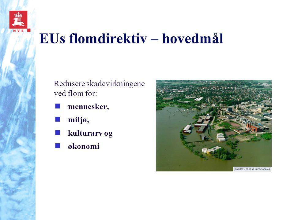 EUs flomdirektiv – hovedmål