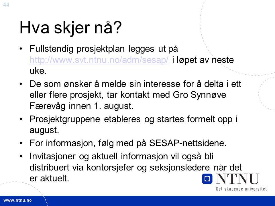 Hva skjer nå Fullstendig prosjektplan legges ut på http://www.svt.ntnu.no/adm/sesap/ i løpet av neste uke.