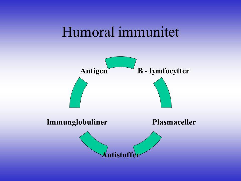 Humoral immunitet