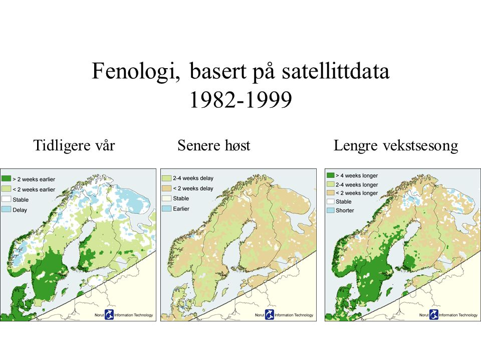 Fenologi, basert på satellittdata 1982-1999