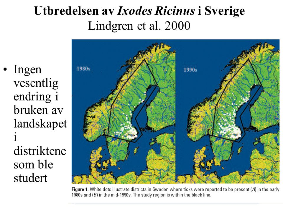 Utbredelsen av Ixodes Ricinus i Sverige Lindgren et al. 2000