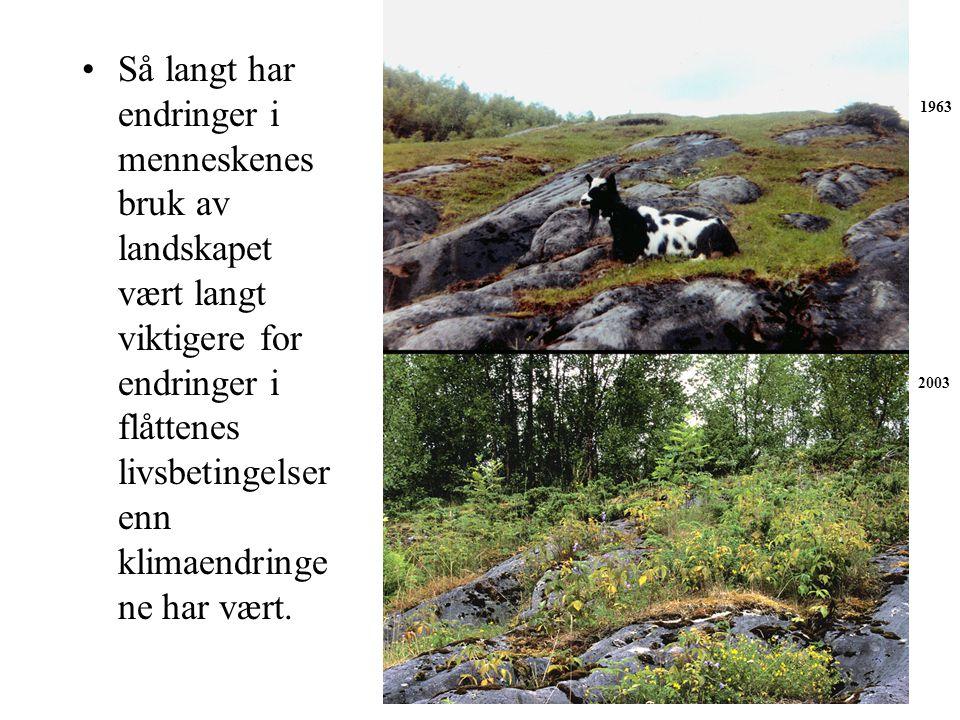 Så langt har endringer i menneskenes bruk av landskapet vært langt viktigere for endringer i flåttenes livsbetingelser enn klimaendringene har vært.