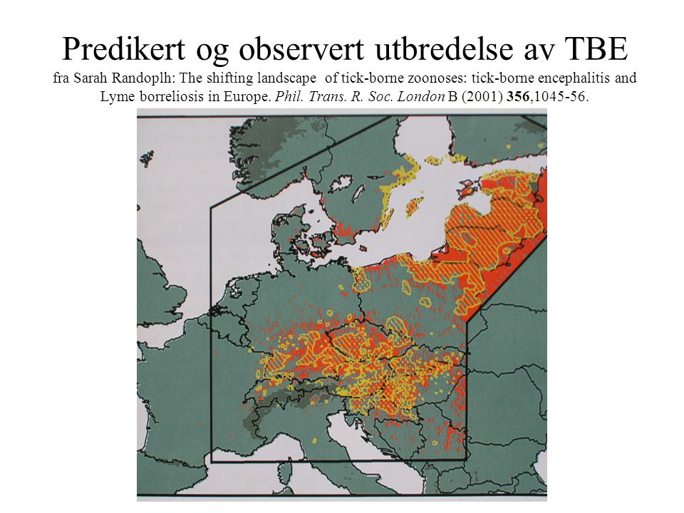 Predikert og observert utbredelse av TBE fra Sarah Randoplh: The shifting landscape of tick-borne zoonoses: tick-borne encephalitis and Lyme borreliosis in Europe.