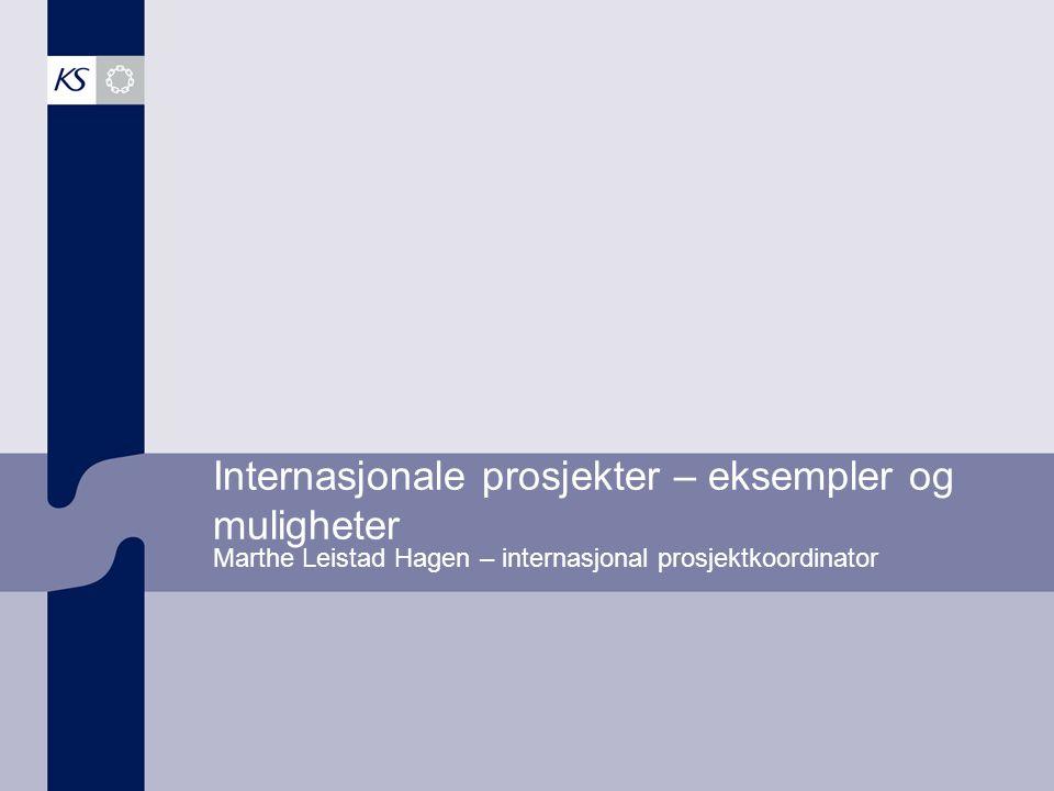 Internasjonale prosjekter – eksempler og muligheter