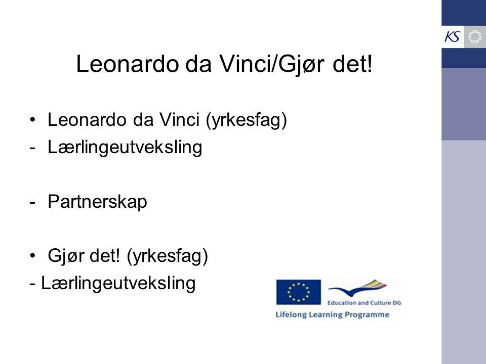 Leonardo da Vinci/Gjør det!