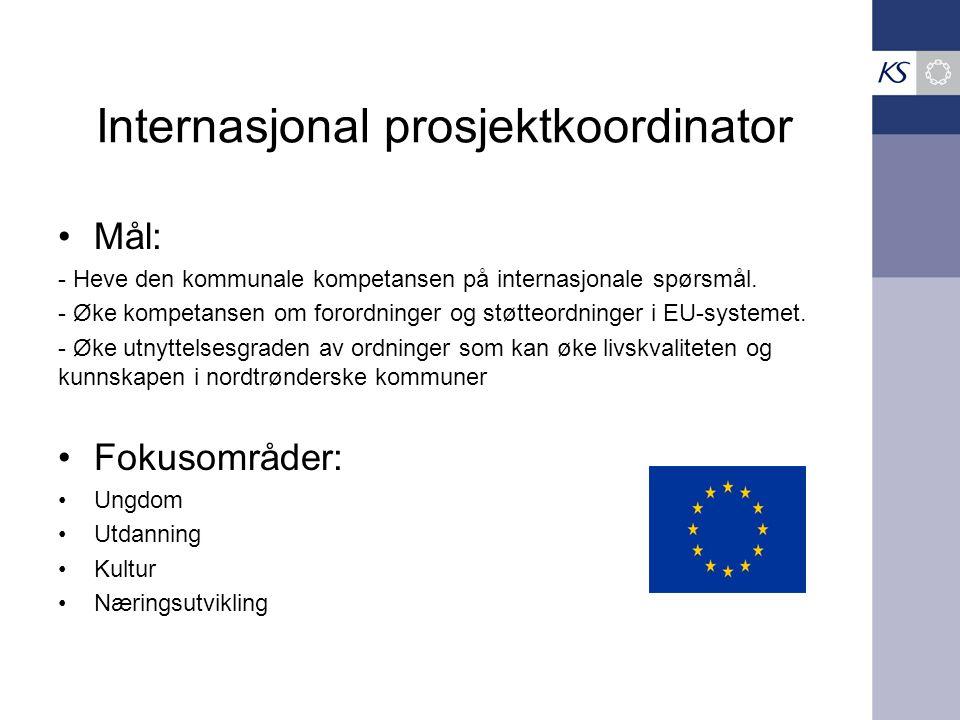 Internasjonal prosjektkoordinator