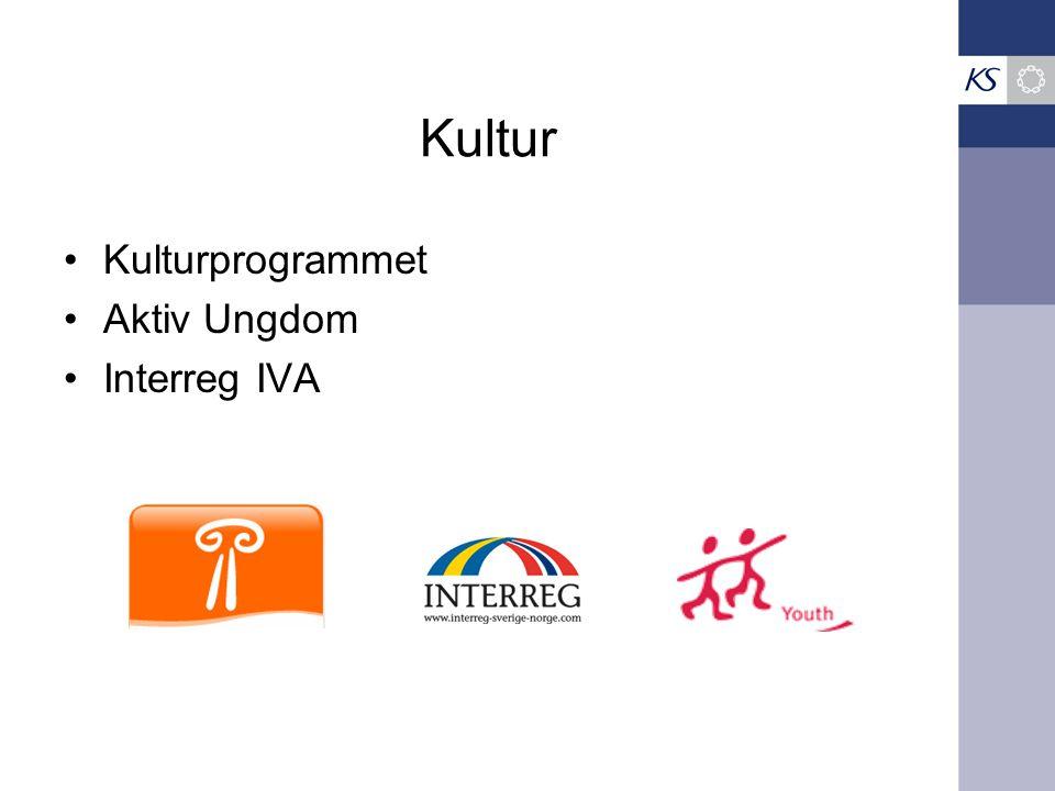 Kultur Kulturprogrammet Aktiv Ungdom Interreg IVA