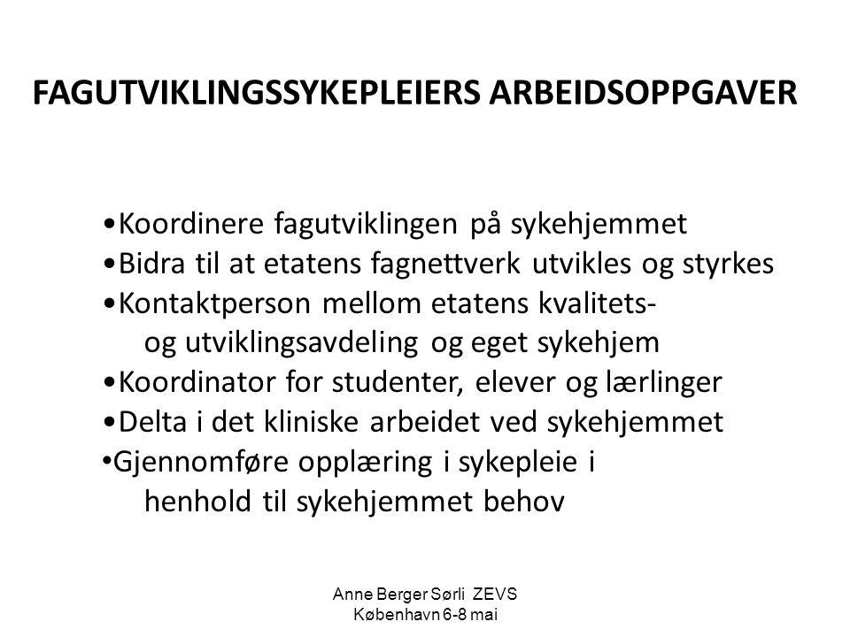 Anne Berger Sørli ZEVS København 6-8 mai