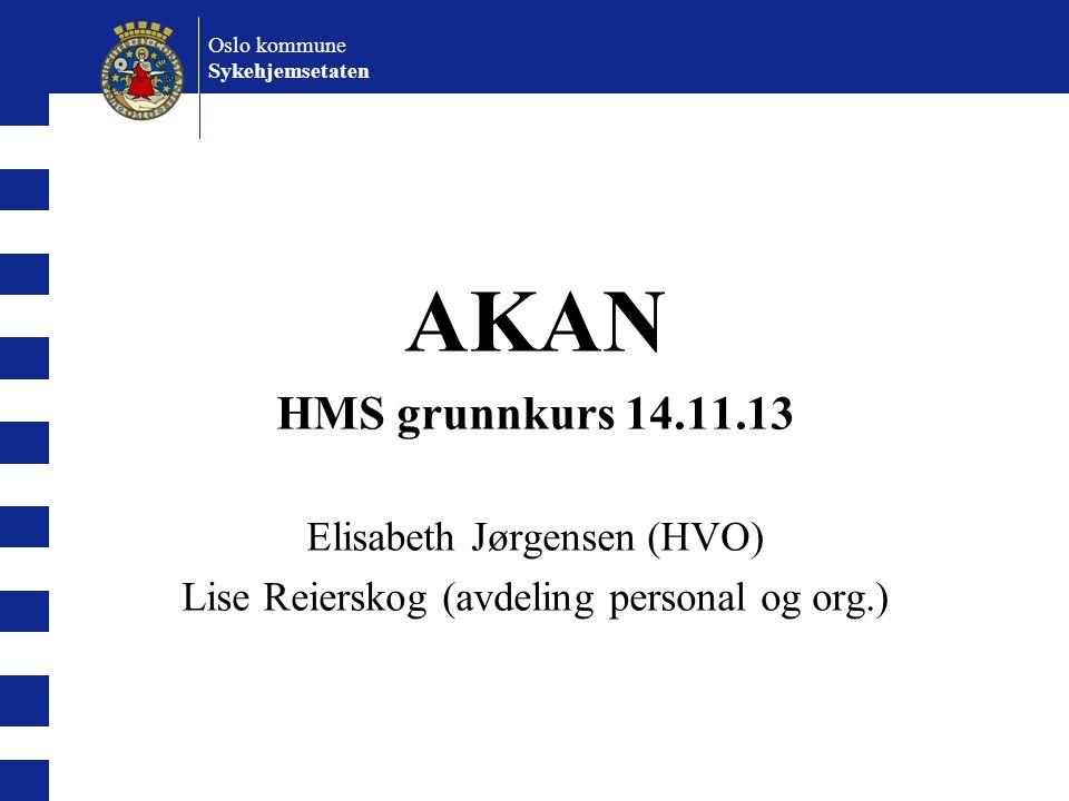 AKAN HMS grunnkurs 14.11.13 Elisabeth Jørgensen (HVO)
