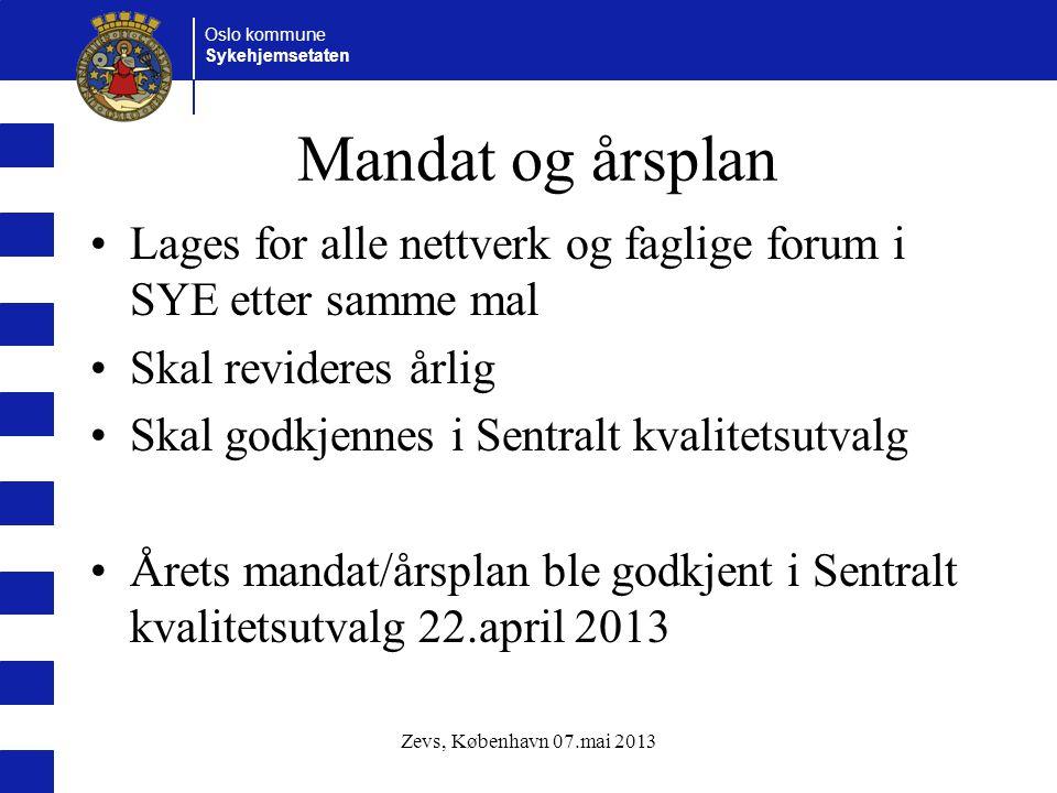 Mandat og årsplan Lages for alle nettverk og faglige forum i SYE etter samme mal. Skal revideres årlig.