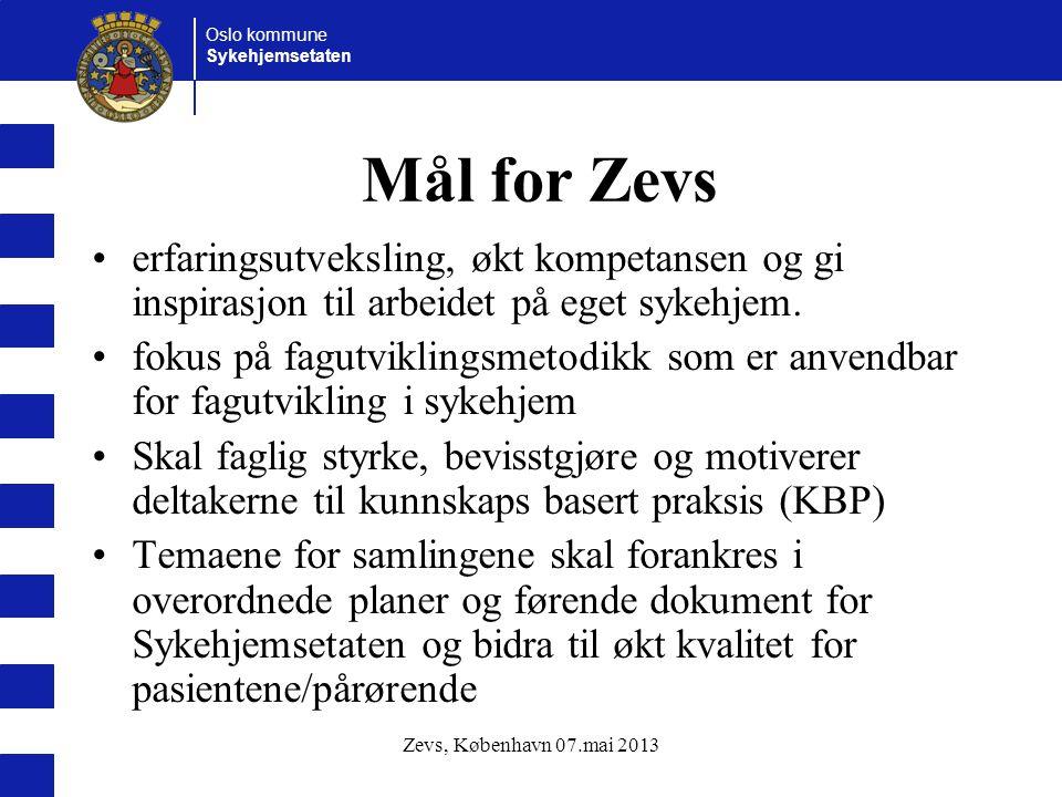 Mål for Zevs erfaringsutveksling, økt kompetansen og gi inspirasjon til arbeidet på eget sykehjem.