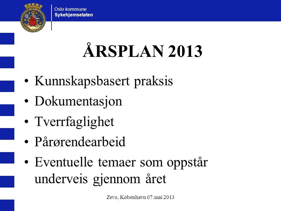 ÅRSPLAN 2013 Kunnskapsbasert praksis Dokumentasjon Tverrfaglighet