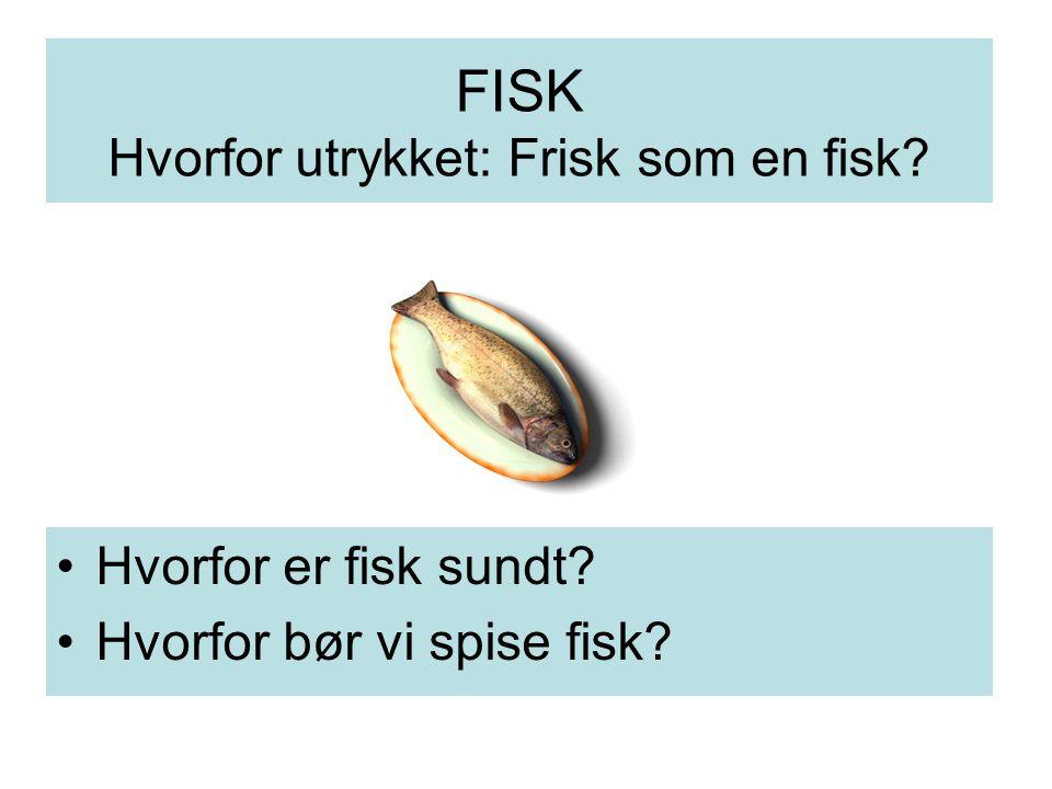 FISK Hvorfor utrykket: Frisk som en fisk