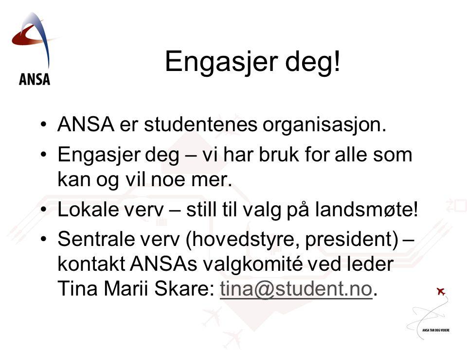 Engasjer deg! ANSA er studentenes organisasjon.
