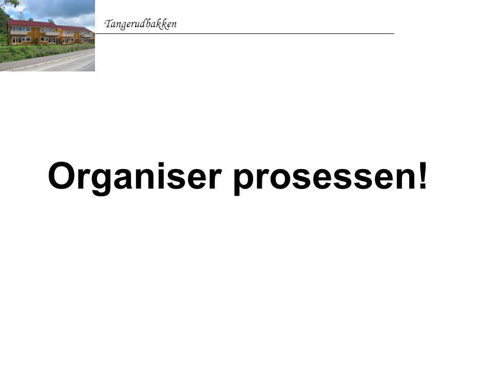 Tangerudbakken Organiser prosessen!