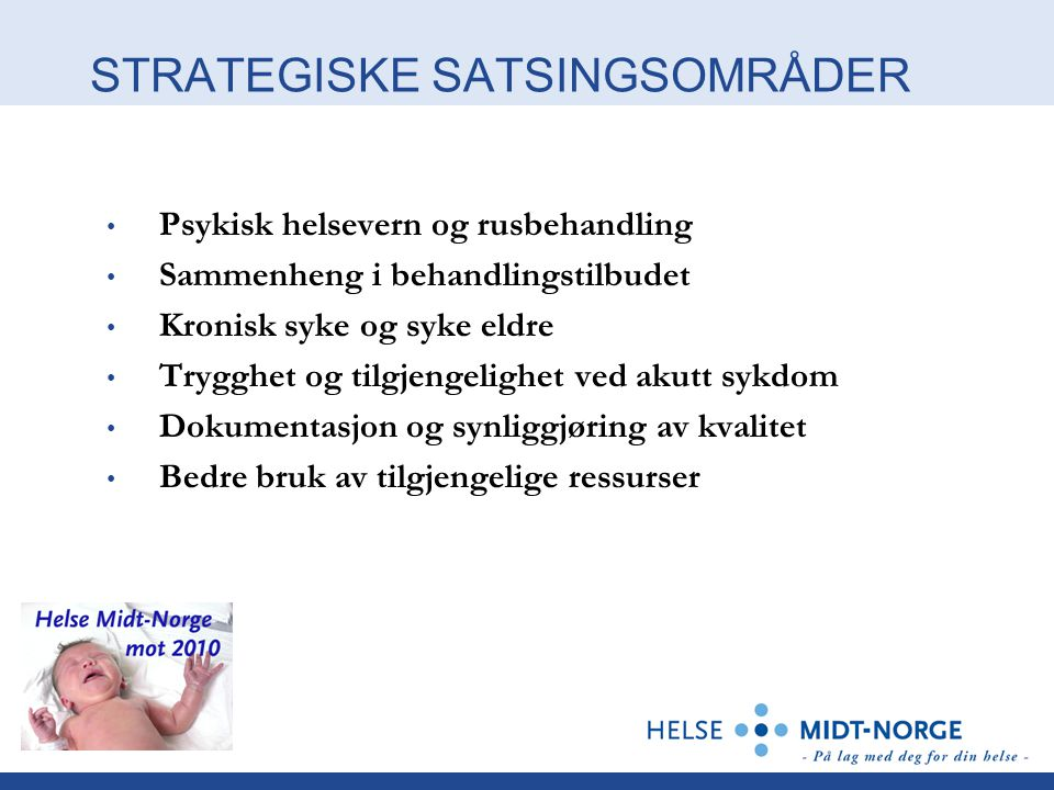 STRATEGISKE SATSINGSOMRÅDER