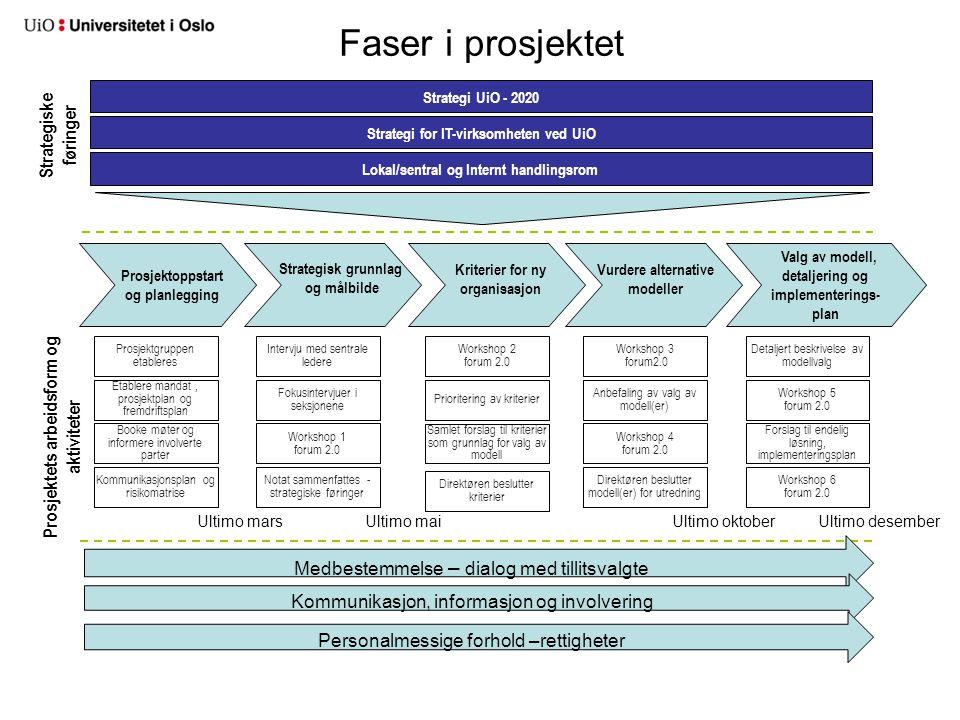 Faser i prosjektet Strategiske føringer Prosjektets arbeidsform og
