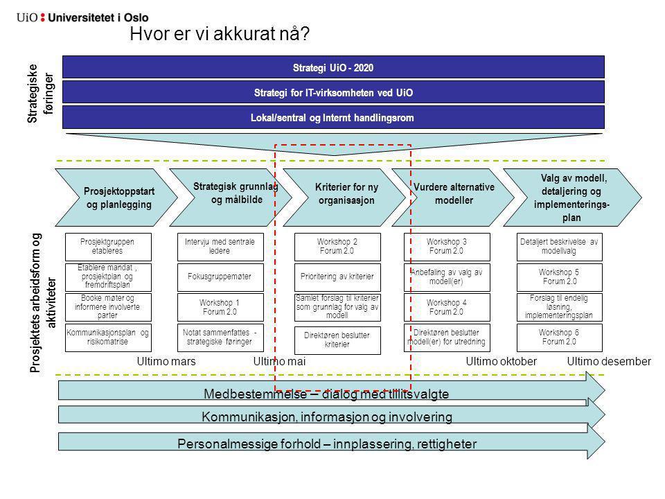 Hvor er vi akkurat nå Strategiske føringer Prosjektets arbeidsform og
