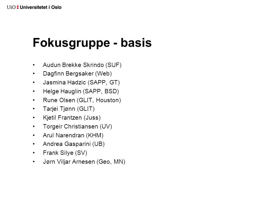 Fokusgruppe - basis Audun Brekke Skrindo (SUF) Dagfinn Bergsaker (Web)