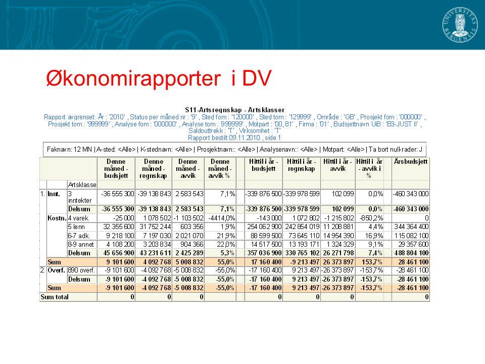 Økonomirapporter i DV