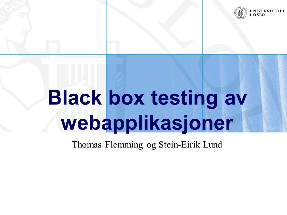 Black box testing av webapplikasjoner