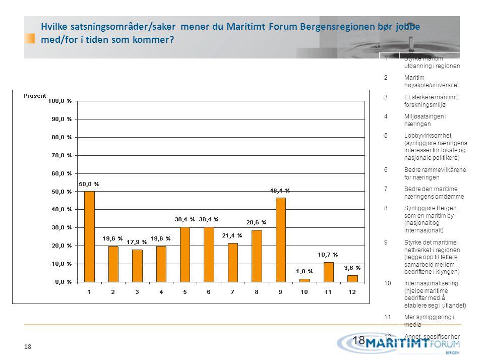 Hvilke satsningsområder/saker mener du Maritimt Forum Bergensregionen bør jobbe med/for i tiden som kommer