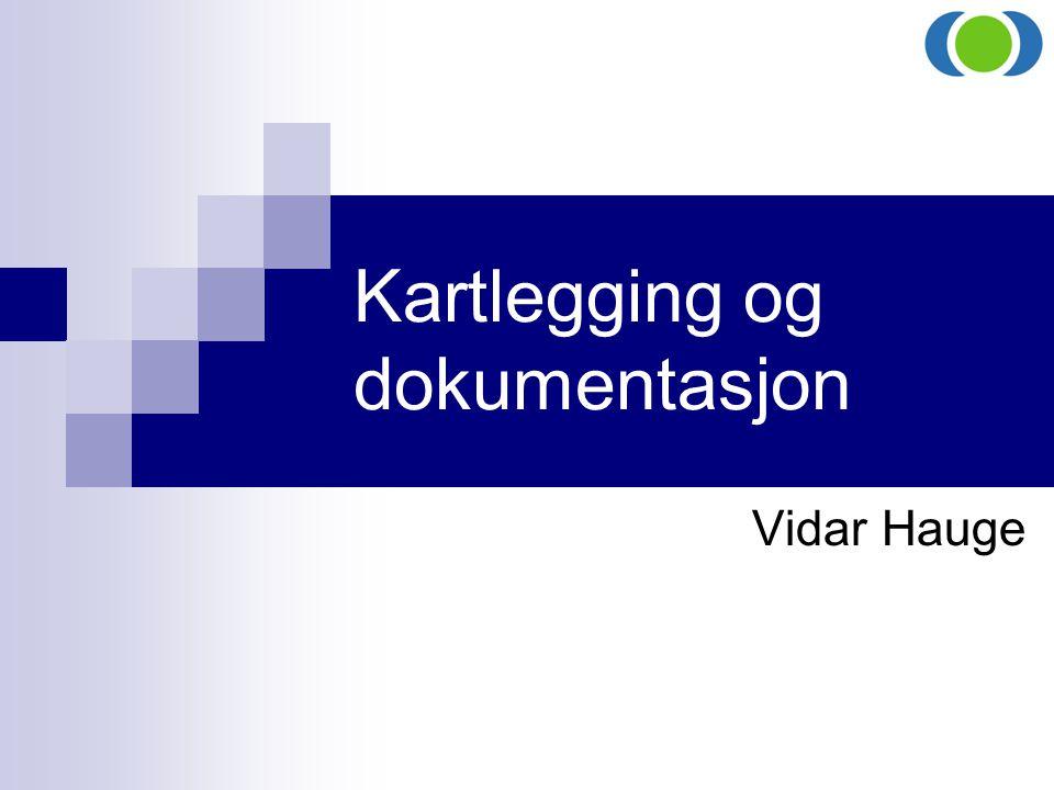 Kartlegging og dokumentasjon