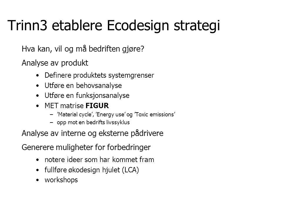 Trinn3 etablere Ecodesign strategi