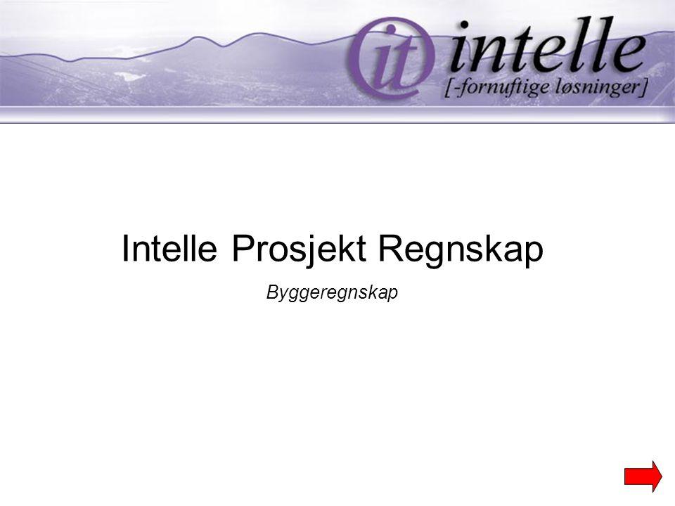 Intelle Prosjekt Regnskap