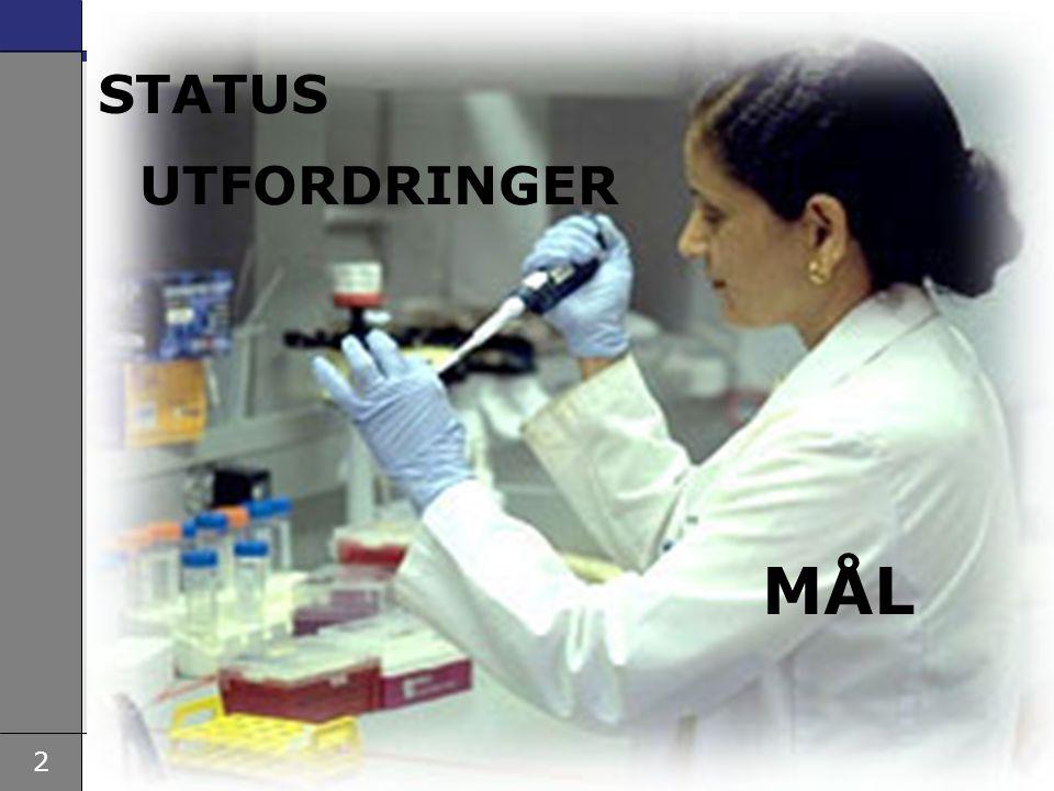 STATUS UTFORDRINGER MÅL
