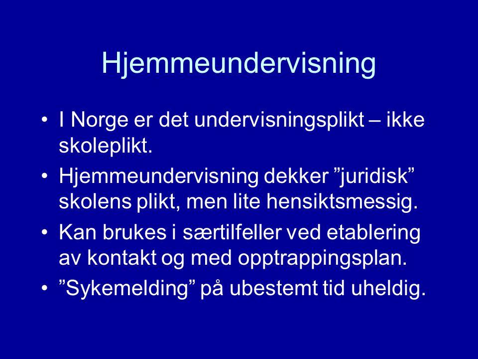Hjemmeundervisning I Norge er det undervisningsplikt – ikke skoleplikt. Hjemmeundervisning dekker juridisk skolens plikt, men lite hensiktsmessig.