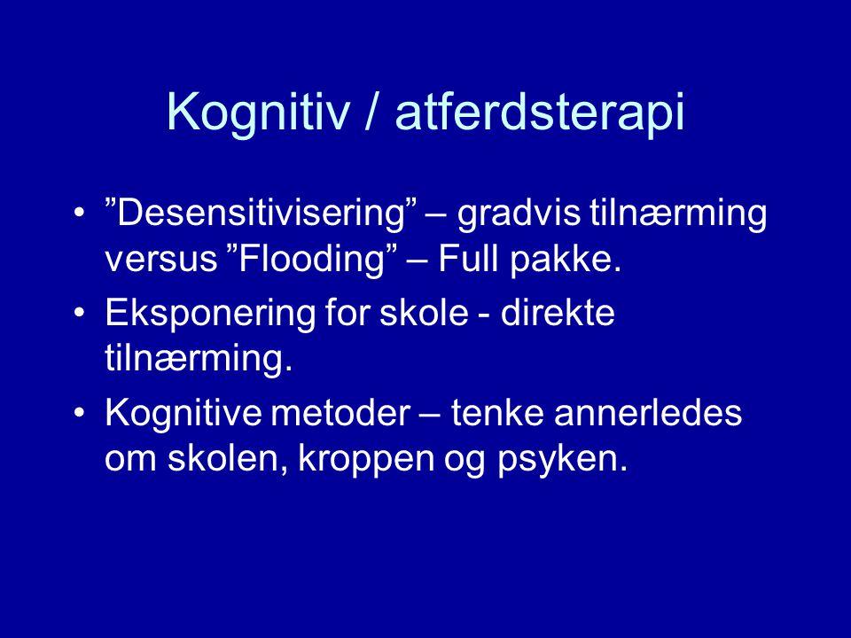 Kognitiv / atferdsterapi