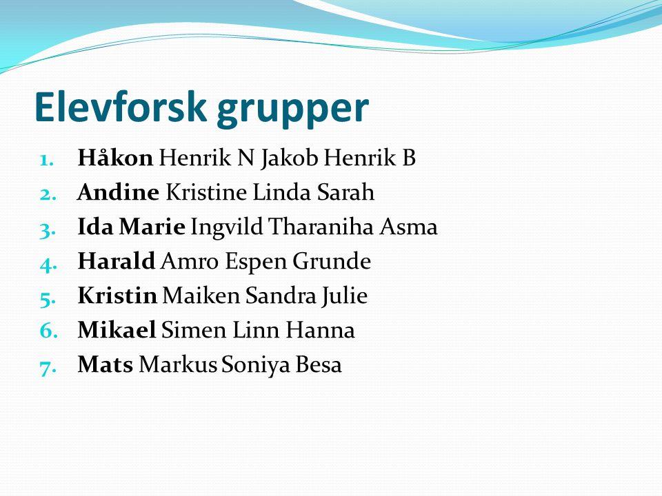 Elevforsk grupper Håkon Henrik N Jakob Henrik B