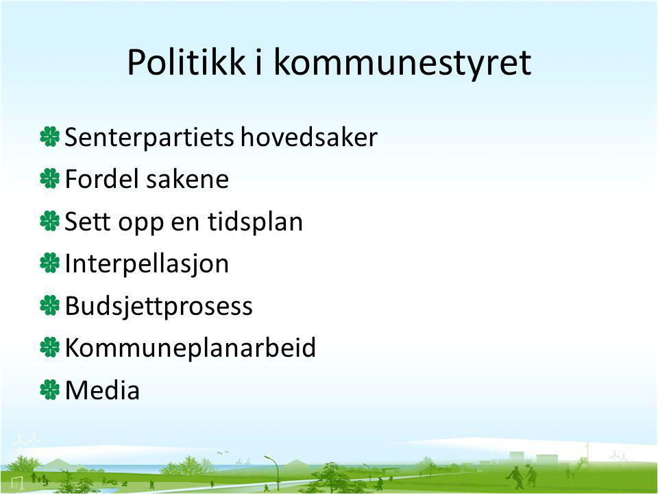Politikk i kommunestyret