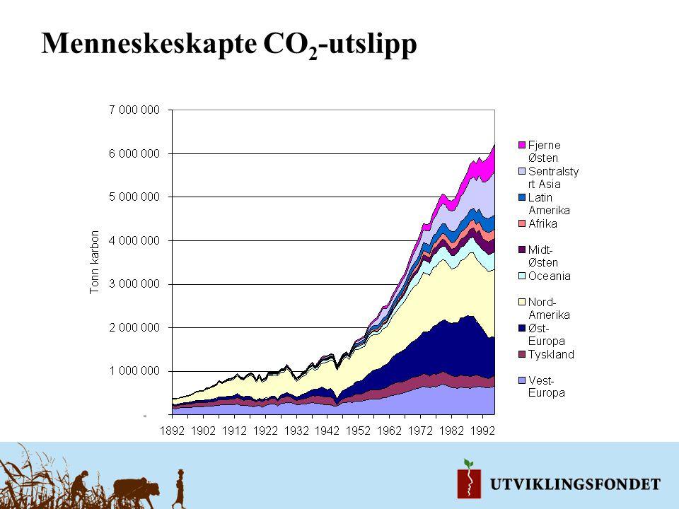 Menneskeskapte CO2-utslipp