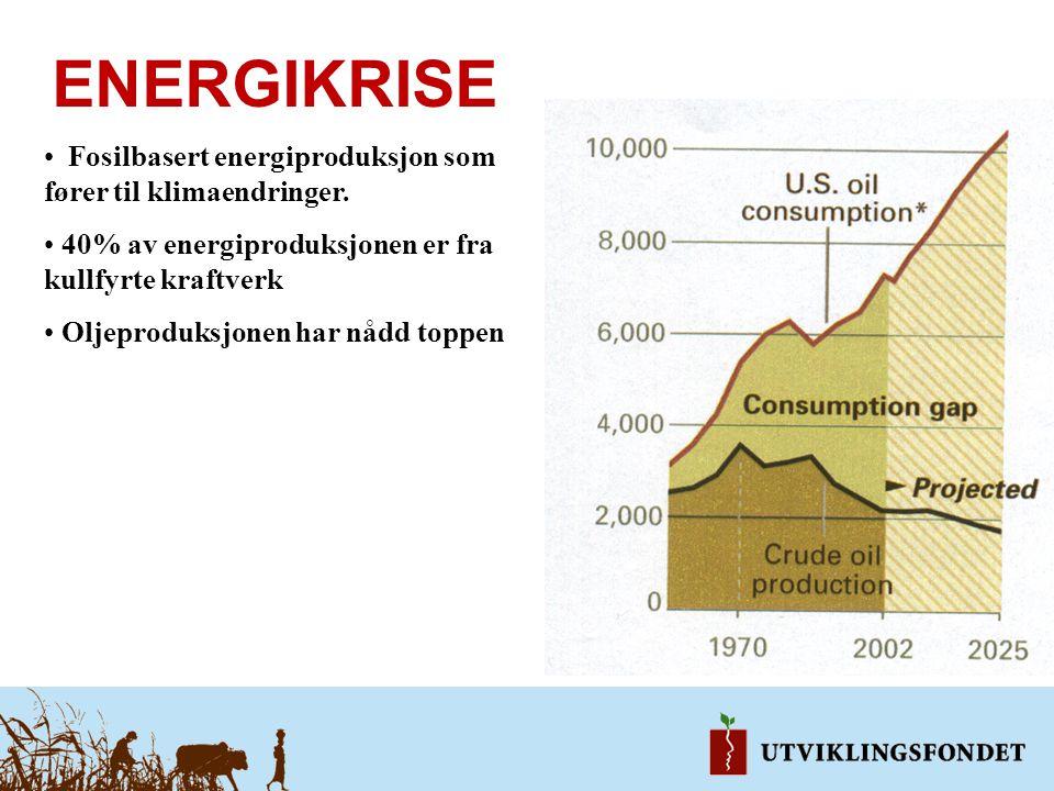 ENERGIKRISE Fosilbasert energiproduksjon som fører til klimaendringer.