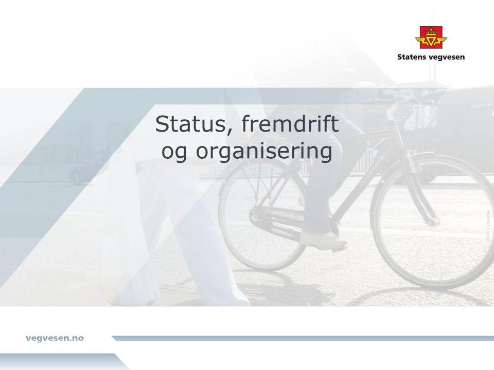 Status, fremdrift og organisering
