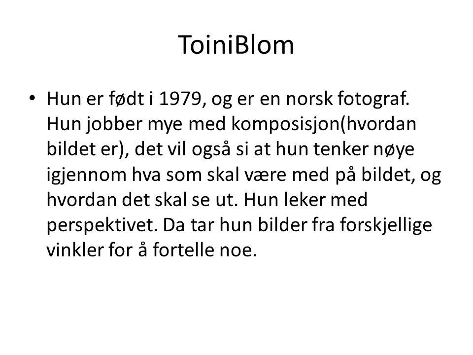 ToiniBlom