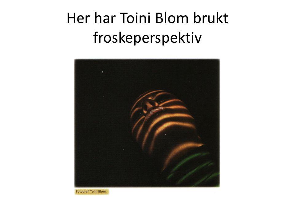 Her har Toini Blom brukt froskeperspektiv