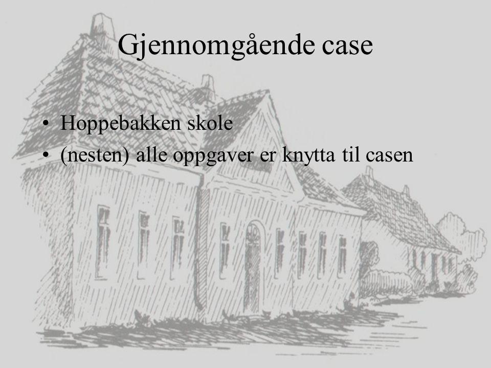 Gjennomgående case Hoppebakken skole