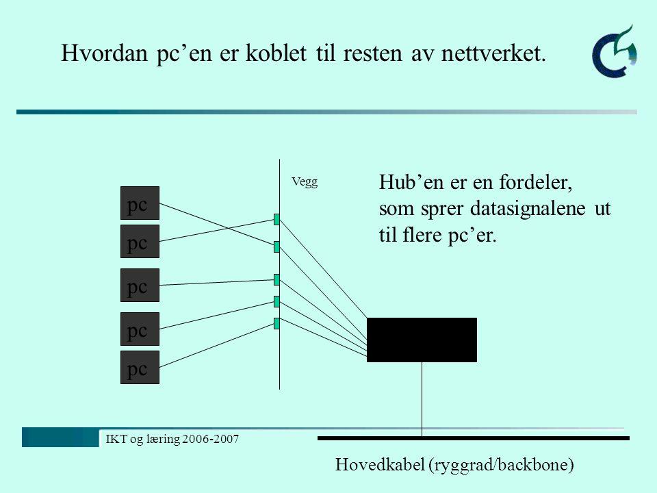 Hvordan pc'en er koblet til resten av nettverket.