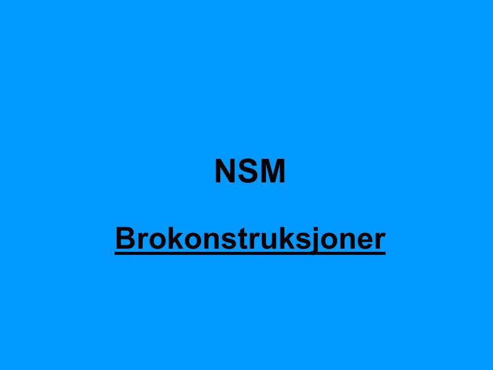 NSM Brokonstruksjoner