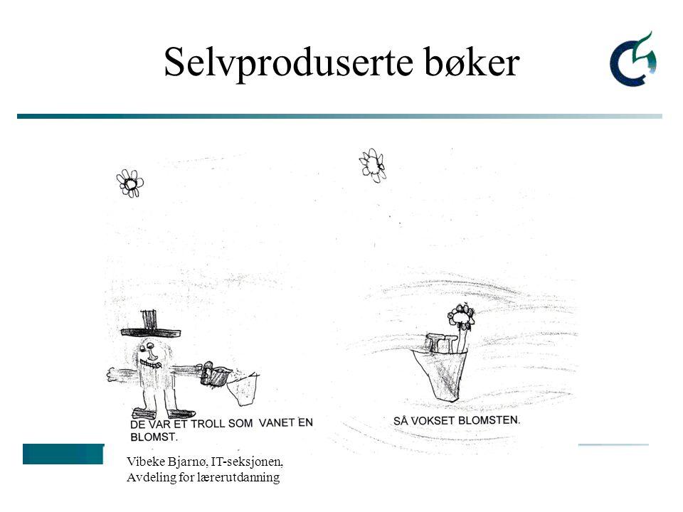 Selvproduserte bøker Vibeke Bjarnø, IT-seksjonen, Avdeling for lærerutdanning