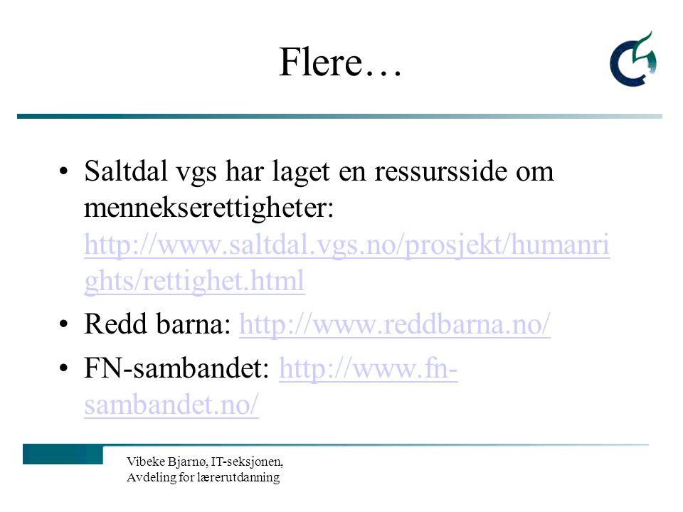 Flere… Saltdal vgs har laget en ressursside om mennekserettigheter: http://www.saltdal.vgs.no/prosjekt/humanrights/rettighet.html.